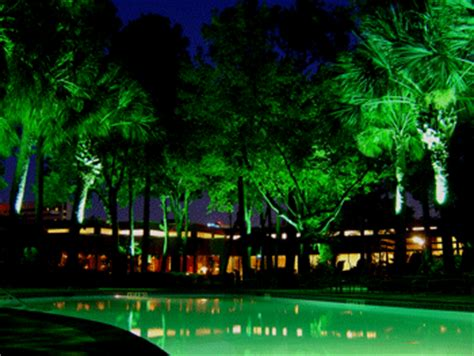 glowing green lights in trees tree lighting illuminations lighting design