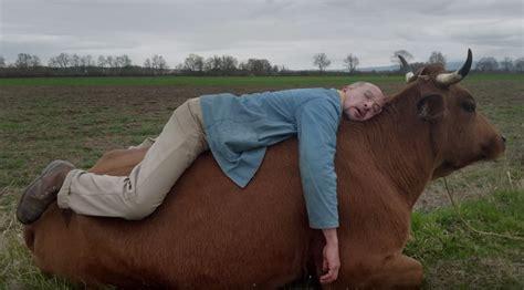 film la vache d 233 couvrez la bande annonce du film la vache avec jamel