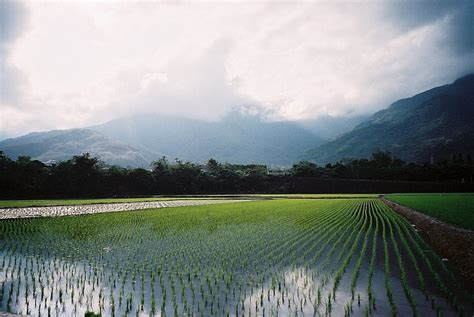 Rise Sun House Taitung Taiwan Asia 42 best taitung taiwan images on taiwan