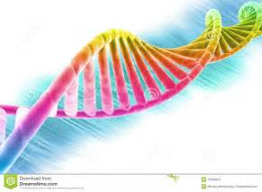 dna strand bright and colorful stock images image 18766654
