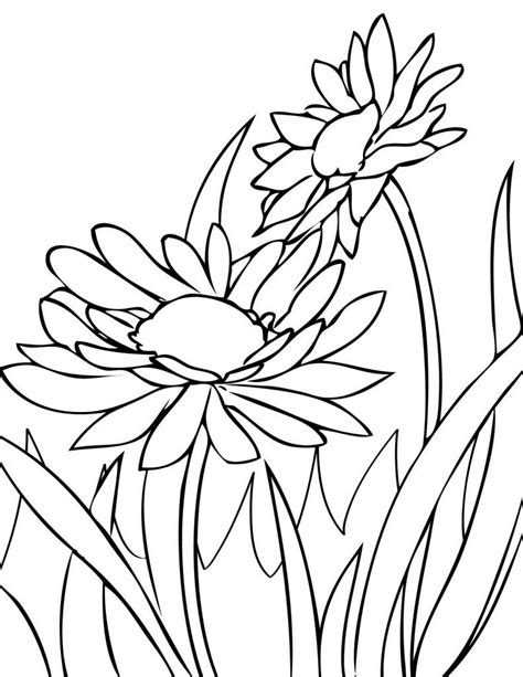 images of spring flowers coloring pages spring flower coloring pages coloringsuite com