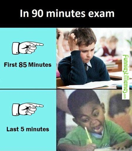 Exam Memes - best 25 exam funny quotes ideas on pinterest