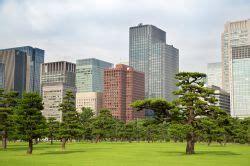 giardini imperiali tokyo una fotografia notturna dei giardini imperiali foto