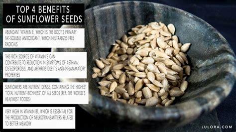 benefits of black sunflower seeds for horses benefits of sunflower seeds superfoods healthy herbs