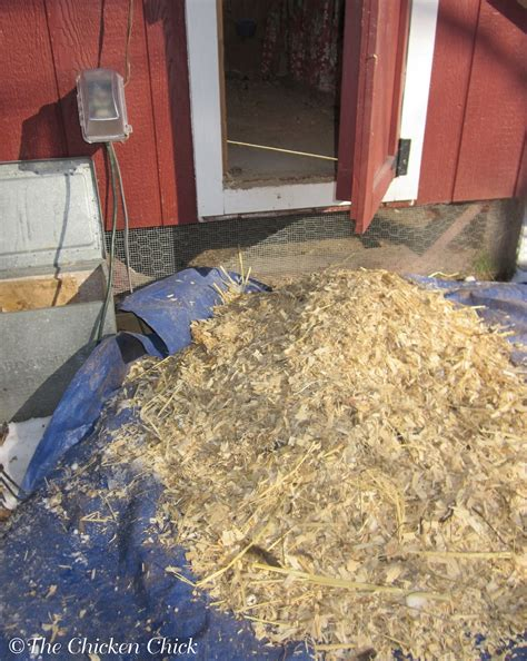 chicken coop bedding the chicken chick 174 chicken coop litter sand the litter