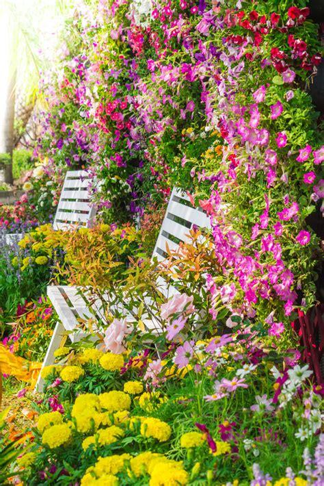color garden 40 colorful garden ideas color explosion
