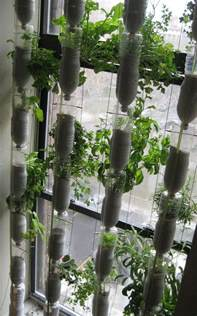 Vertical Vegetable Gardening Systems Build A Vertical Garden From Recycled Soda Bottles Diy