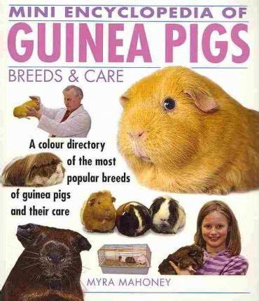 7 Tips On Caring For Pigs by Mini Encyclopedia Of Guinea Pigs Breeds And Care Myra