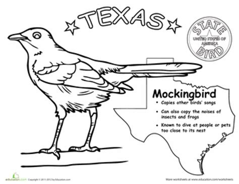 texas bird coloring page texas state bird birds colors and texas