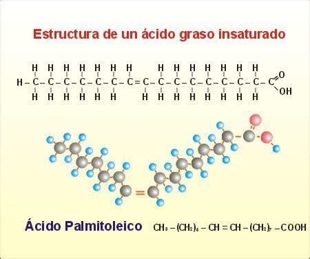 cadenas hidrocarbonadas clasificacion proyecto biosfera
