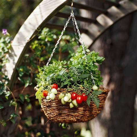 Hanging Vegetable Garden Grow Vegetables In Hanging Baskets