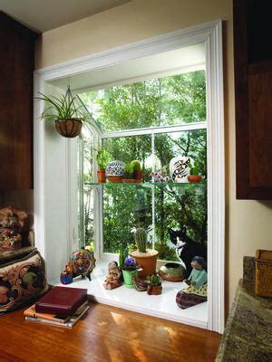 home plant  bit  garden   kitchen