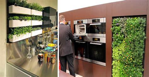 imagenes de uñas modernas 2015 huerto de plantas arom 225 ticas en la cocina blog