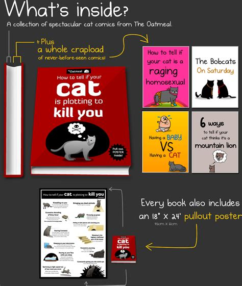 how to if your you how to tell if your cat is plotting to kill you a book by the oatmeal the oatmeal