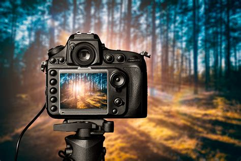 best dslr photos best dslr 1000 in 2018 5 high quality cameras you