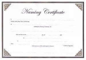 ccn certificate samples