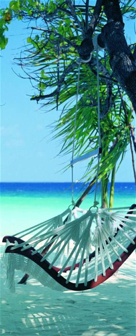 swinging resorts 25 best ideas about island beach resort on pinterest