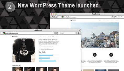 zoomy our new wordpress theme for photography lovers