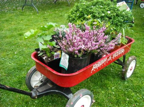 Garden Plants For Sale by Plant And Rummage Sale
