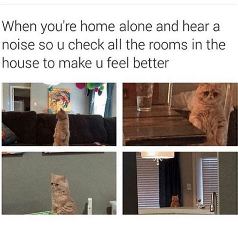 when you re home alone and hear a noise so u check all the