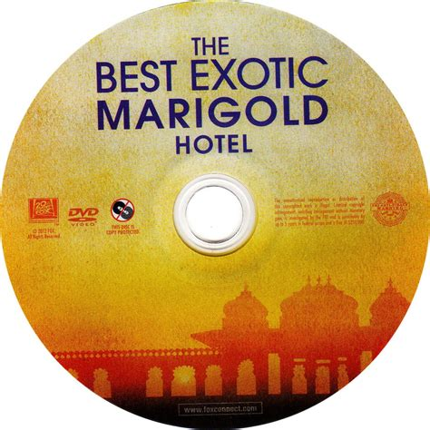 the best the best marigold hotel scanned dvd labels the
