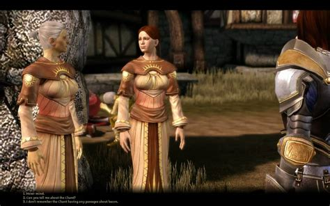 chantry sister dragon age origins funny chantry sisters in denerim
