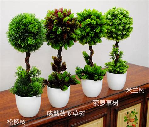 imitation plants home decoration aliexpress com buy home decor mini bonsai tree set