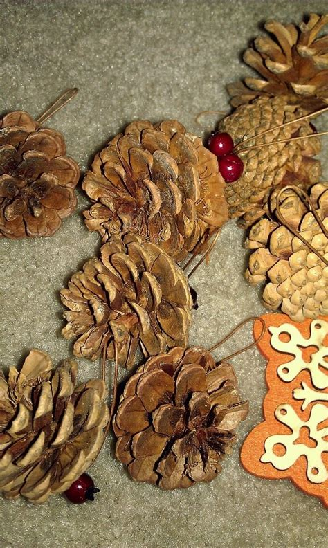 235 best images about pine cones on pinterest