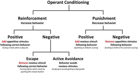 Behavior Modification Uses Learning Principles To Change S Actions Or Feelings by File Operant Conditioning Diagram Rev Svg Wikimedia Commons
