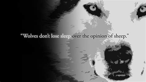 black and white anime wolves 3 background wallpaper quote full hd wallpaper and background image 1920x1080