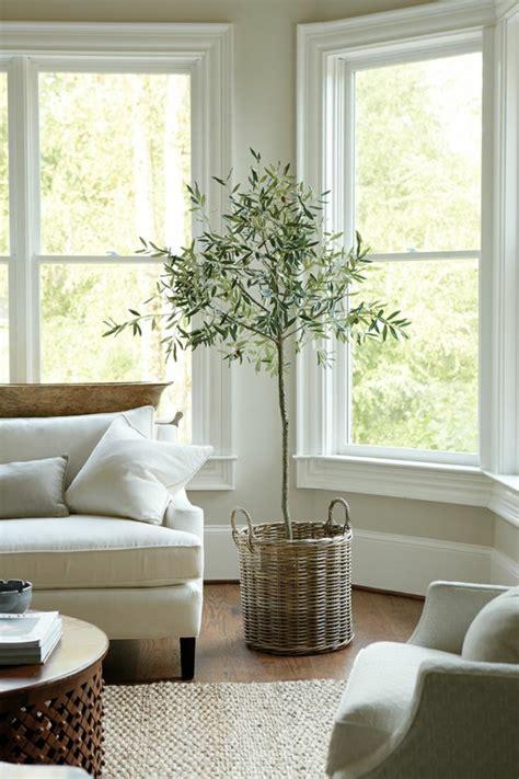 zimmerpflanzen schön dekorieren gr 252 npflanzen bestimmen ihr ambiente dekorieren sie mit