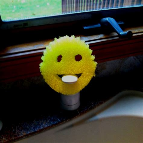 Sponge Happy Scrub Sponge Pembersih Multi Guna 17 best images about scrub on smiley faces surface cleaners and cleanses