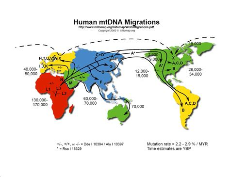 migration pattern meaning in hindi land bridge theory open websites