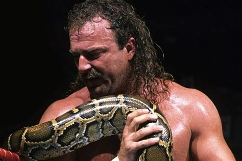 jake  snake roberts   promos   career