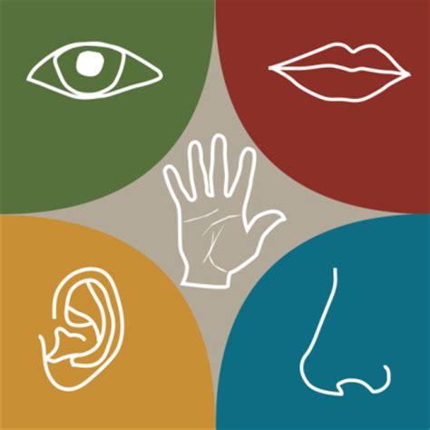 imagenes marketing sensorial los sentidos caza del tesoro
