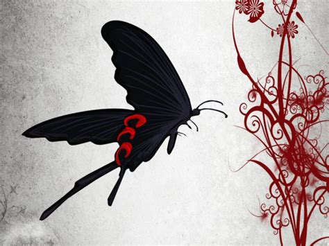 Plus Black Butterfly L abstract butterfly wallpapers wallpaper cave