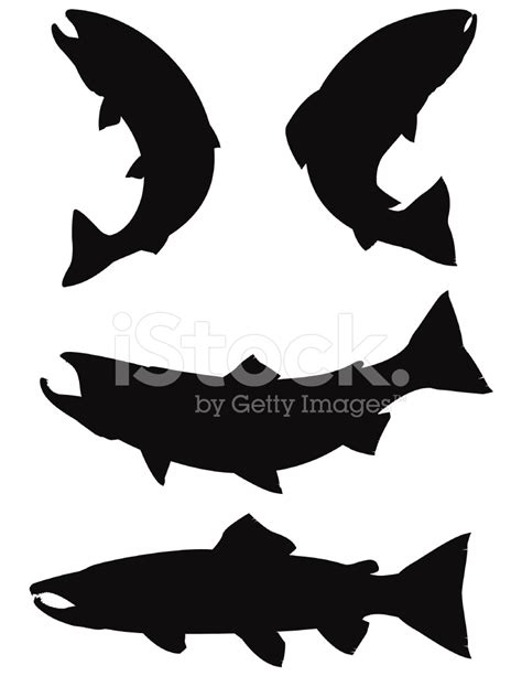Home Design Computer Games Trout And Salmon Silhouettes Stock Vector Freeimages Com