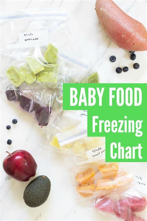 Freezer Frozen Food apple puree for baby freeze