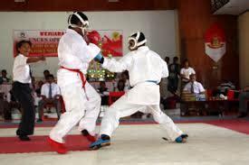 Baju Karate Bkc amelsbeb geamaose