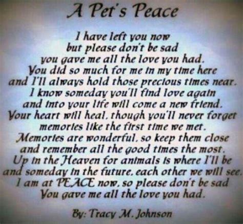 comforting words for loss of a pet a pet s peace animals pinterest my boys pets and my