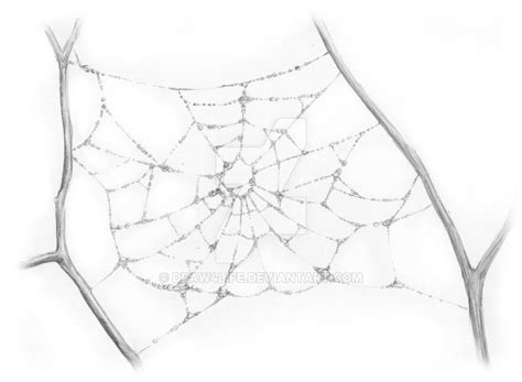 draw website realistic spider web drawings www pixshark images