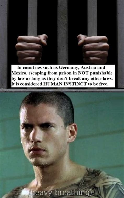 Prison Break Memes - prison break funny quotes quotesgram