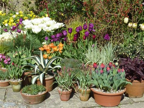 Planting Flowers In Planters by Plant Pots The Enduring Gardener