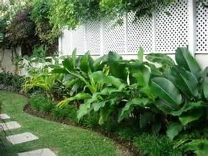 border plants gardening pinterest