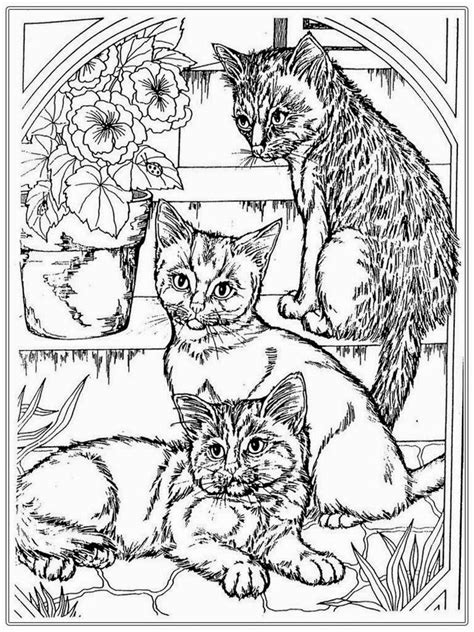 coloring books for adults cats 48 and cat coloring pages printable gianfreda net