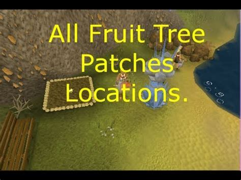 fruit tree patches osrs all fruit tree patches locations