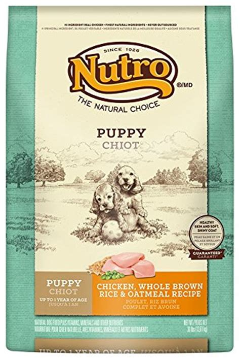 nutro and rice puppy nutro puppy chicken whole brown rice and oatmeal food 30 lbs pets trend store