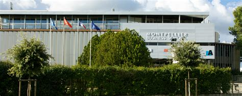 Montpellier Business School Mba by Montpellier Business School N 176 13 Au Classement Masters