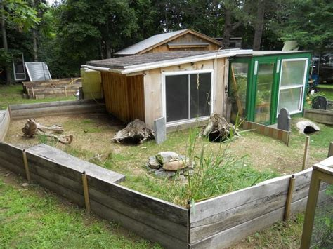 sulcata tortoise pen new tort shed and pen for sulcata