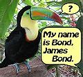 category james bond ornithologist wikimedia commons